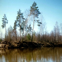 Водный поход, р.Б.Кокшага + р.Юшут