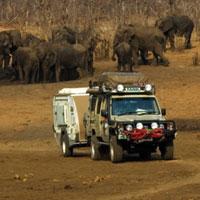 Африканское сафари в национальном парке Hwange, Зимбабве