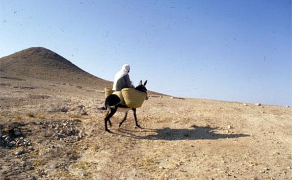 Древние туристы-путешественники