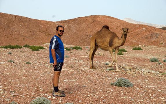 Романтическое путешествие, Оман, Вас могут потревожить местные жители :)