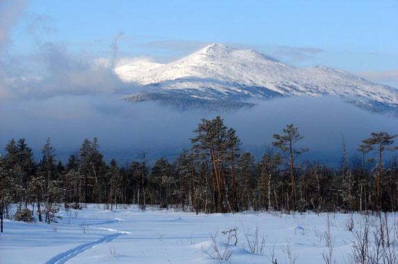 Северный Урал, Денежкин камень (1492 м)