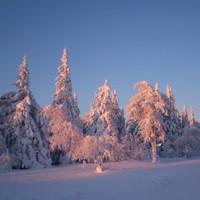 Сусанин на Южном Урале в лыжном походе