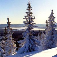Озеро Зюраткуль или поселок Сибирка?