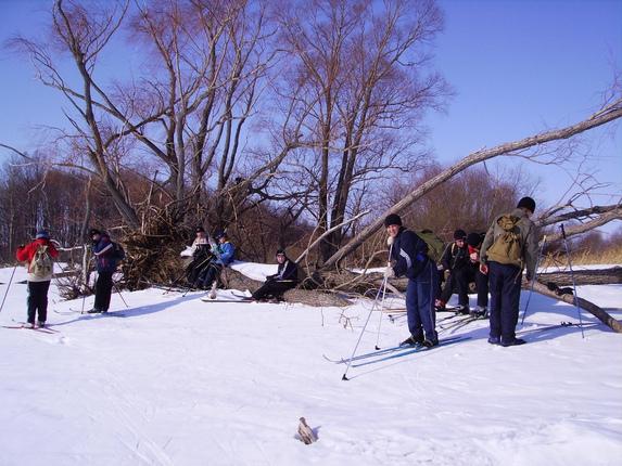 Группа школьников и зимний лес