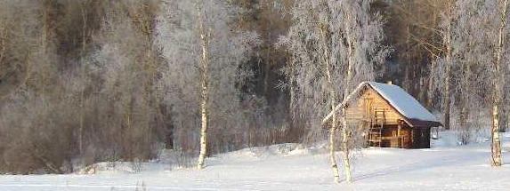 Сочинение. Зима! Ребенок торжествует! Избушка в лесу.