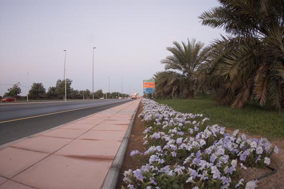 Оман, велопутешествие, магистрали