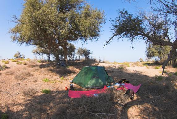 Оман, велопутешествие, ставим палатку в трех деревьях