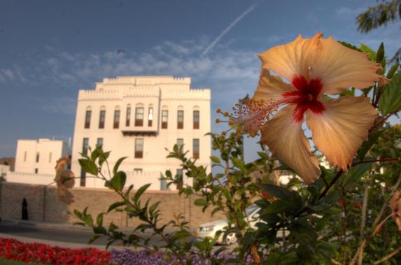Оман, город Маскат (Muscat)