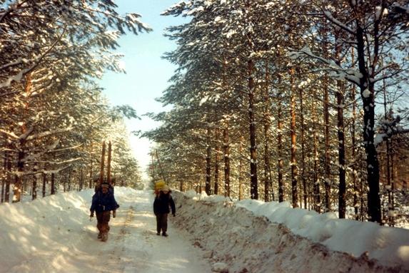 Дорога на поселок Суслонгер